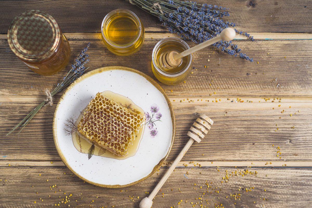 Tlačová správa pre TASR – Slovenskí včelári: Rok 2020 je najhorším pre včelárov za posledných 30 rokov